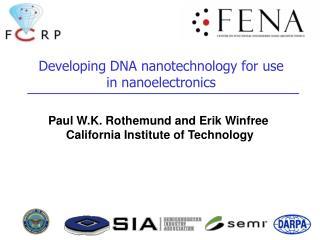 Developing DNA nanotechnology for use in nanoelectronics