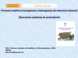 Pilar Terreros: Instituto de Catálisis y Petroleoquímica, CSIC, Madrid  pterreros@icp.csic.es
