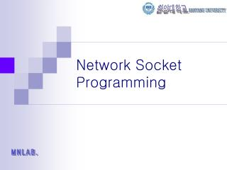 Network Socket Programming