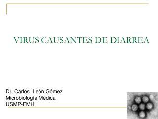 VIRUS CAUSANTES DE DIARREA