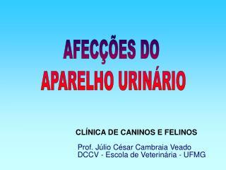 AFEC��ES DO  APARELHO URIN�RIO