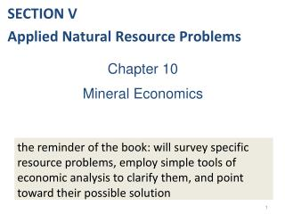 Chapter 10 Mineral Economics