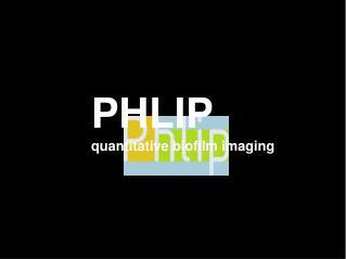PHLIP quantitative biofilm imaging