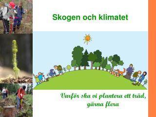 Skogen och klimatet