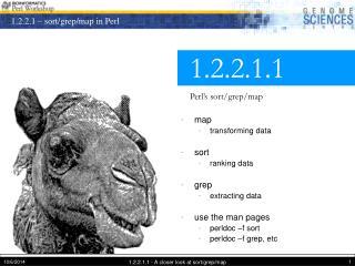 1.2.2.1.1 Perl�s sort/grep/map