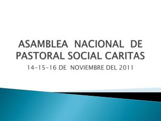 ASAMBLEA  NACIONAL  DE PASTORAL SOCIAL CARITAS