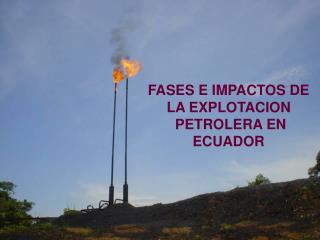 FASES E IMPACTOS DE LA EXPLOTACION  PETROLERA EN ECUADOR