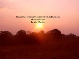 Proyecto de Irrigación en la Comunidad Koinonia Mthunzi Centre. Lusaka-Zambia