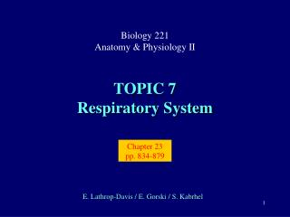 TOPIC 7 Respiratory System