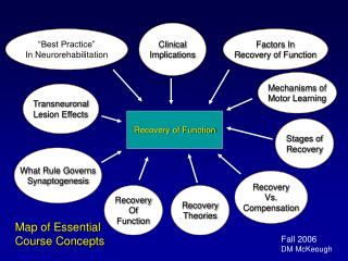 Recovery of Function
