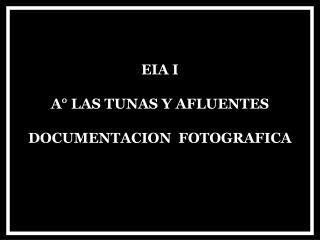 EIA I A� LAS TUNAS Y AFLUENTES DOCUMENTACION  FOTOGRAFICA