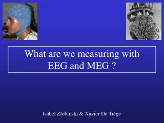 What are we measuring with EEG and MEG