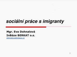 sociální práce s imigranty