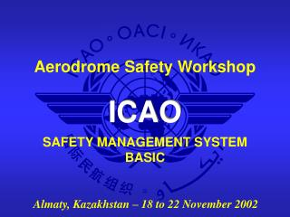 SAFETY MANAGEMENT SYSTEM BASIC