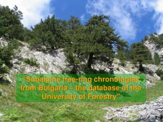 """Subalpine tree-ring chronologies from Bulgaria – the database of the University of Forestry"""