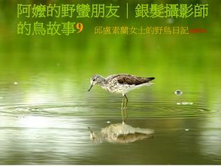 阿嬤的野蠻朋友|銀髮攝影師的鳥故事 9 邱盧素蘭女士的野鳥日記 SEP05
