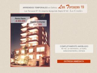 COMPLETAMENTE AMOBLADO 45 m2, un dormitorio, un baño, estacionamiento y terraza