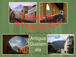 La ciudad de Las Perpetuas Rosas