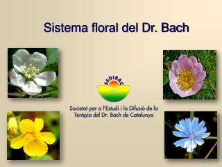 Sistema floral del Dr. Bach