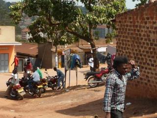 PP Herbies dans fra Uganda_last ned