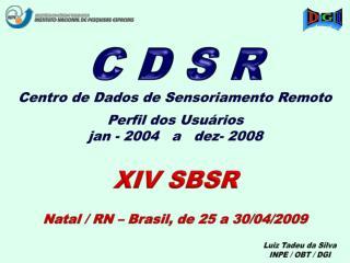 Centro de Dados de Sensoriamento Remoto Perfil dos Usuários jan - 2004   a   dez- 2008