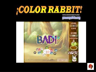 ¡COLOR RABBIT!