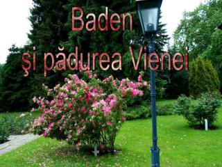 Baden  şi pădurea Vienei