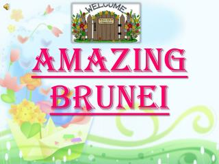 Amazing Brunei
