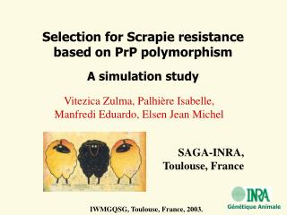 Selection for Scrapie resistance  based on PrP polymorphism