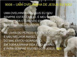 UMA  OVELHINHA DE JESUS EU SOU SEMPRE ESTÁ COMIGO, É MEU BOM PASTOR.