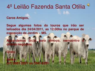 4º Leilão Fazenda Santa Otilia