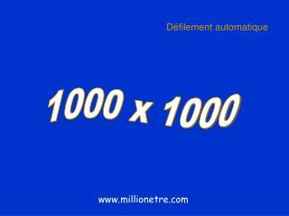 1000 x 1000
