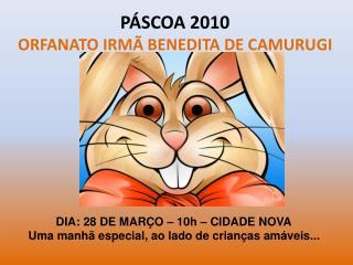 PÁSCOA 2010 ORFANATO IRMÃ BENEDITA DE CAMURUGI
