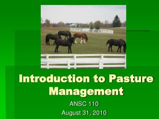 Introduction to Pasture Management