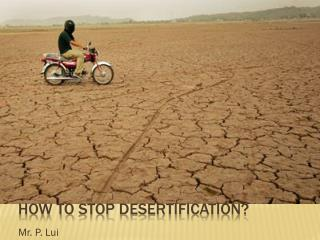 How to  stoP  DESERTIFICATION?