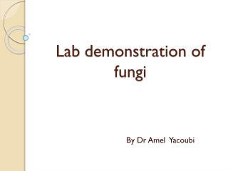 Lab demonstration  of  fungi