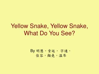 Yellow Snake, Yellow Snake, What Do You See?