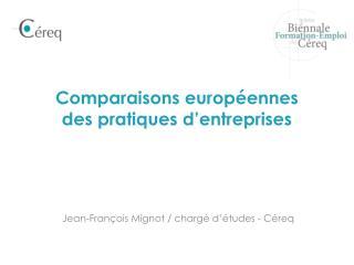 Comparaisons européennes  des pratiques d'entreprises