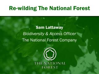 Re-wilding The National Forest