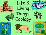 Life  Living Things: Ecology
