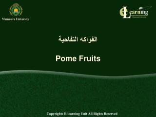 ??????? ???????? Pome Fruits
