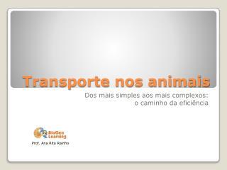 Transporte nos animais
