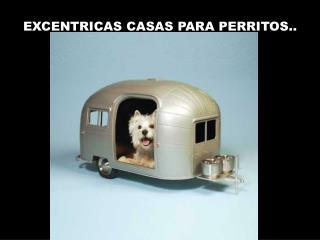 EXCENTRICAS CASAS PARA PERRITOS..