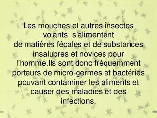 Les mouches et autres insectes volants  s'alimentent  de matières fécales et de substances