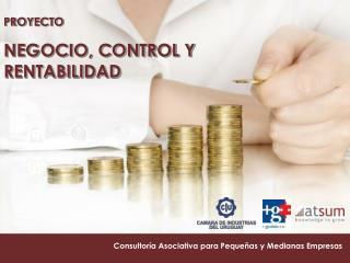Consultoría Asociativa para Pequeñas y Medianas Empresas