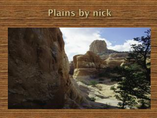 Plains by nick