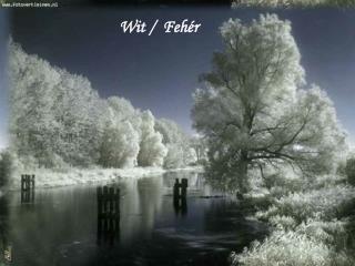 Wit /  Fehér
