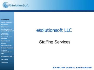 esolutionsoft LLC