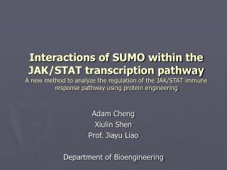 Interactions of SUMO within the JAK