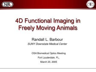 4D Functional Imaging in Freely Moving Animals